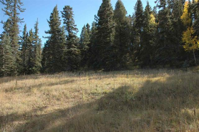 lot 1654 El Vado Way, Angel Fire, NM 87710 (MLS #102538) :: Page Sullivan Group | Coldwell Banker Mountain Properties