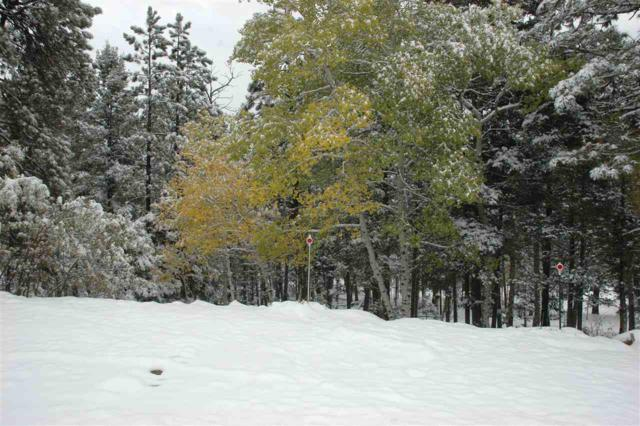 lot 850 San Mateo Circle, Angel Fire, NM 87710 (MLS #102544) :: The Chisum Realty Group