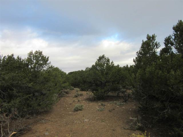 19 Dulcimer, El Rito, NM 87556 (MLS #102545) :: Page Sullivan Group | Coldwell Banker Mountain Properties
