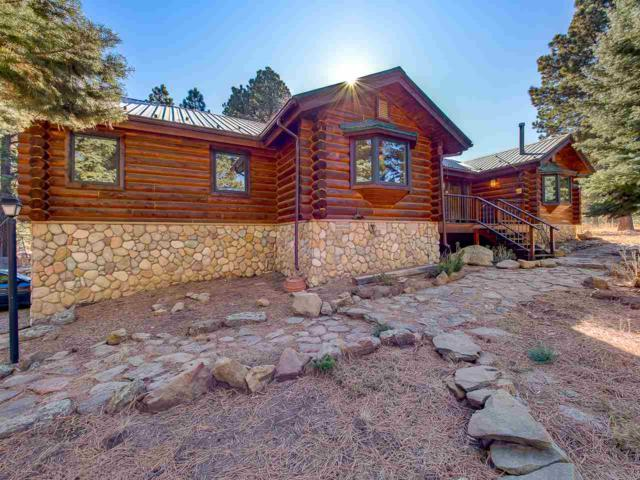 85 San Mateo, Angel Fire, NM 87710 (MLS #102549) :: Angel Fire Real Estate & Land Co.