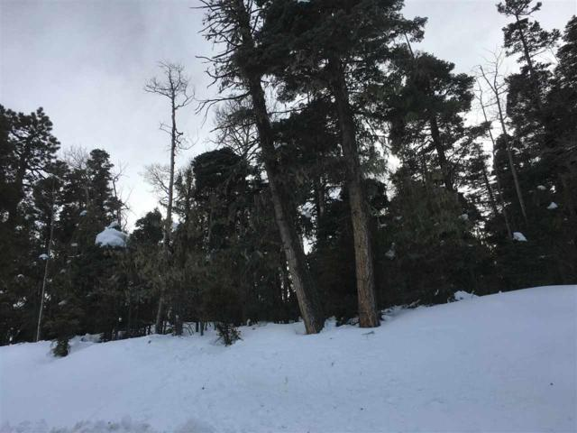 150 Brazos Drive, Angel Fire, NM 87710 (MLS #102583) :: Page Sullivan Group | Coldwell Banker Mountain Properties
