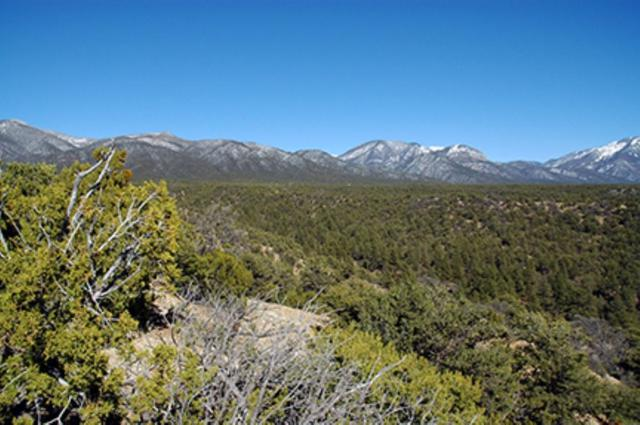 Lot 13 Duval Road, Arroyo Hondo, NM 87513 (MLS #102585) :: Page Sullivan Group | Coldwell Banker Mountain Properties