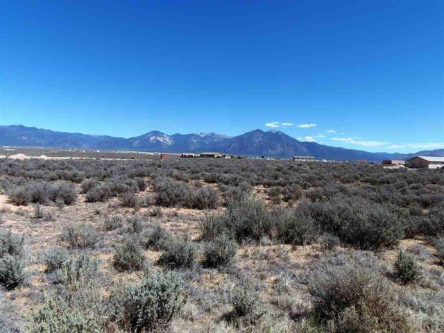 160 Camino Tortuga, El Prado, NM 87529 (MLS #102625) :: Page Sullivan Group | Coldwell Banker Mountain Properties