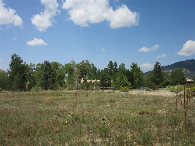 68 Calle Martinez Road, Arroyo Seco, NM 87514 (MLS #102646) :: Angel Fire Real Estate & Land Co.