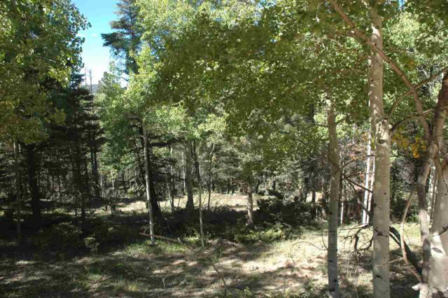 1204 Cheerful Way, Angel Fire, NM 87710 (MLS #102669) :: The Chisum Realty Group