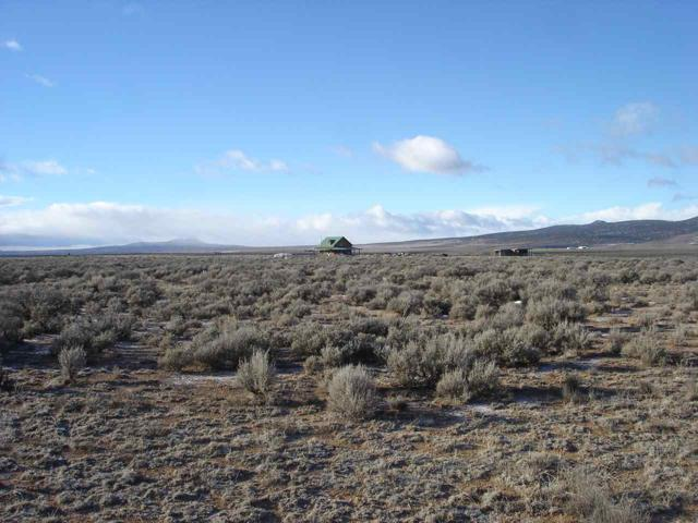 80 Acres Off Of County Road B122, Taos, NM 87571 (MLS #102681) :: Page Sullivan Group | Coldwell Banker Mountain Properties