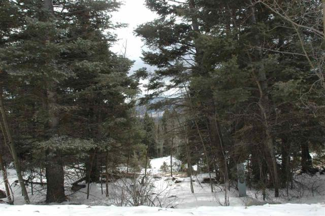 El Camino Real, Angel Fire, NM 87710 (MLS #102693) :: Angel Fire Real Estate & Land Co.