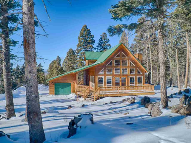 18 Skyview Way, Angel Fire, NM 87710 (MLS #102737) :: The Chisum Realty Group