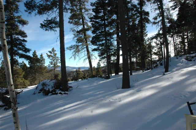 lot 1492 Peralta, Angel Fire, NM 87710 (MLS #102738) :: Page Sullivan Group | Coldwell Banker Mountain Properties