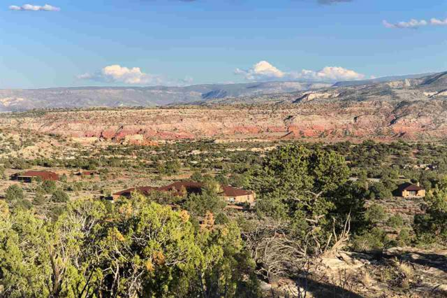 Rancho Palizada, Youngsville, NM 87064 (MLS #102740) :: The Chisum Realty Group