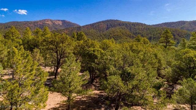 265 Gallina Canyon, Arroyo Hondo, NM 87513 (MLS #102756) :: Page Sullivan Group | Coldwell Banker Mountain Properties