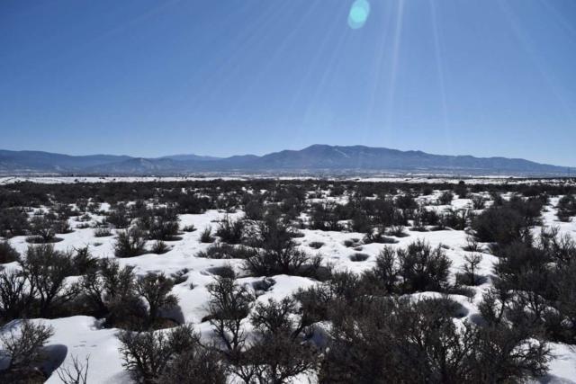 Camino Tortuga, El Prado, NM 87529 (MLS #102777) :: The Chisum Realty Group