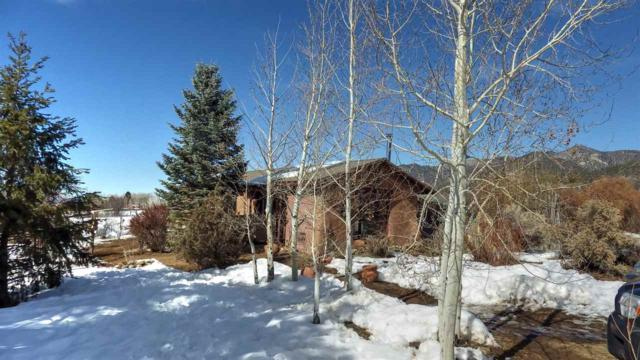 8 Cottonwood, Arroyo Seco, NM 87514 (MLS #102783) :: Page Sullivan Group | Coldwell Banker Mountain Properties