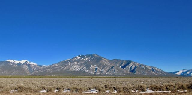 Lot 1 Monte Vista Subdivision Hwy 150, Taos County, NM 87529 (MLS #102790) :: Page Sullivan Group | Coldwell Banker Mountain Properties