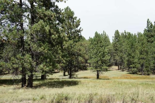 Lakeview Park Drive, Angel Fire, NM 87710 (MLS #102808) :: The Chisum Realty Group