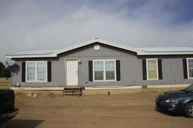 267 Lambert Hills Blvd, Cimarron, NM 87718 (MLS #102811) :: The Chisum Realty Group