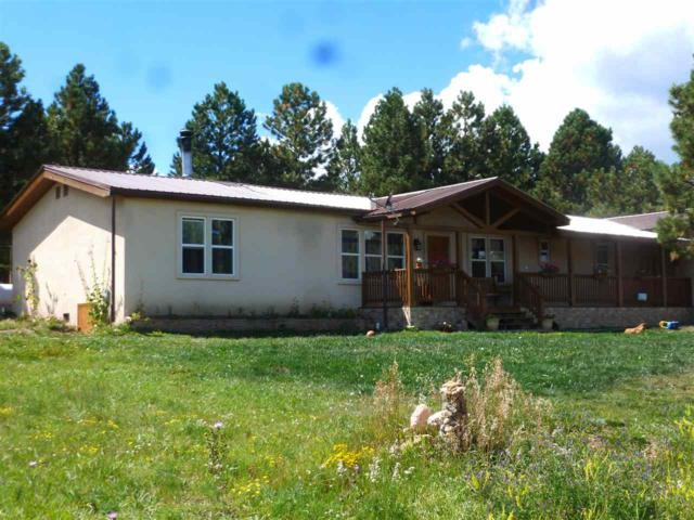 41 Laguna Road, Angel Fire, NM 87710 (MLS #102816) :: The Chisum Realty Group