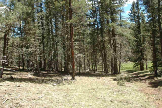 65 Navajo Circle, Angel Fire, NM 87710 (MLS #102821) :: The Chisum Realty Group