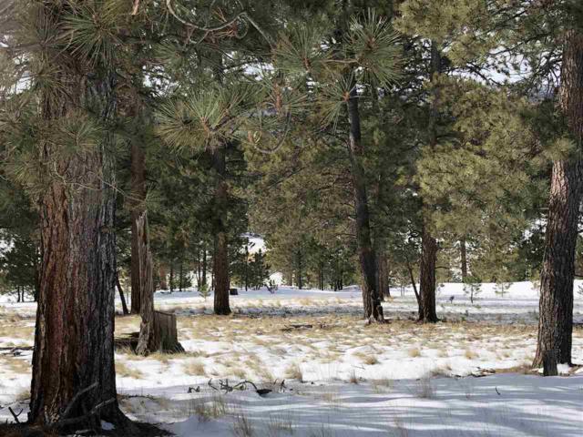 Lot 3 Laguna Negra Circle, Angel Fire, NM 87722 (MLS #102840) :: The Chisum Realty Group