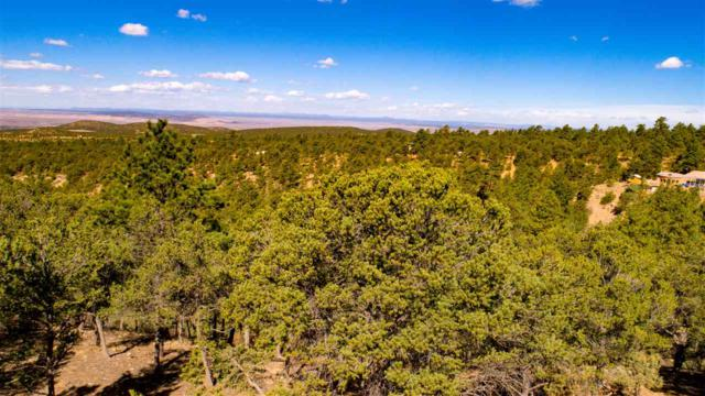 266 Gallina Canyon Road, Valdez, NM 87513 (MLS #102841) :: Page Sullivan Group | Coldwell Banker Mountain Properties