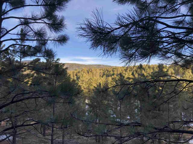 1068 Woodlands Drive, Angel Fire, NM 87710 (MLS #102863) :: Angel Fire Real Estate & Land Co.