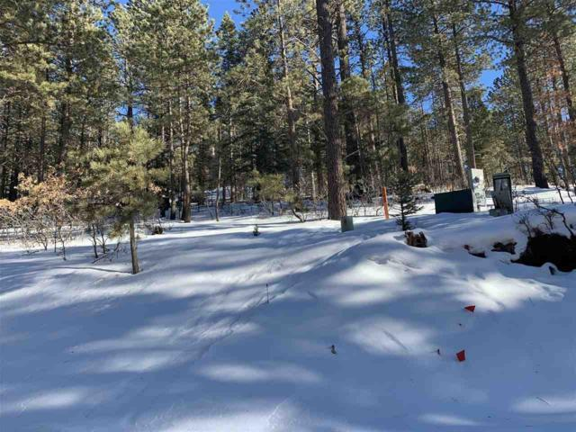 99 Back Basin Road, Angel Fire, NM 87710 (MLS #102864) :: The Chisum Realty Group