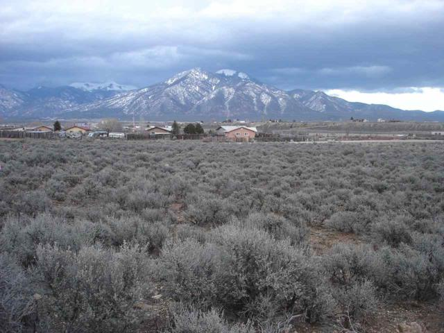 Off Calle Emelina, Taos, NM 87571 (MLS #102888) :: Angel Fire Real Estate & Land Co.