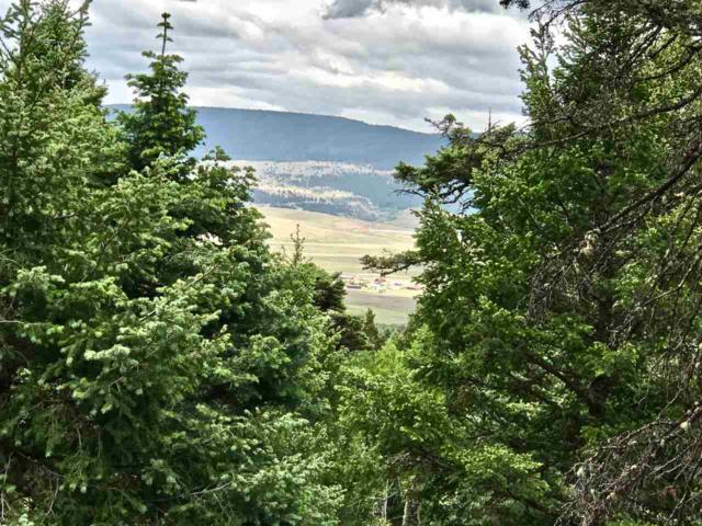Lot 62 Taos Pines Ranch Rd, Angel Fire, NM 87710 (MLS #102895) :: Angel Fire Real Estate & Land Co.