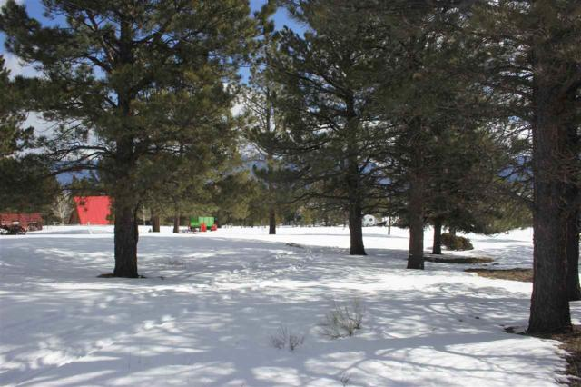 TBD Lakeview Pines, Eagle Nest, NM 87718 (MLS #102926) :: Page Sullivan Group | Coldwell Banker Mountain Properties