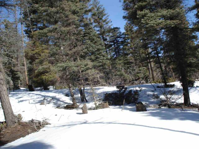Lot 350 Vail Loop, Angel Fire, NM 87710 (MLS #102944) :: Angel Fire Real Estate & Land Co.