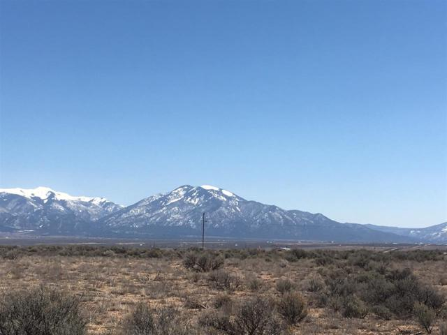 17 Lot 17D Rim Road, El Prado, NM 87529 (MLS #102961) :: The Chisum Realty Group