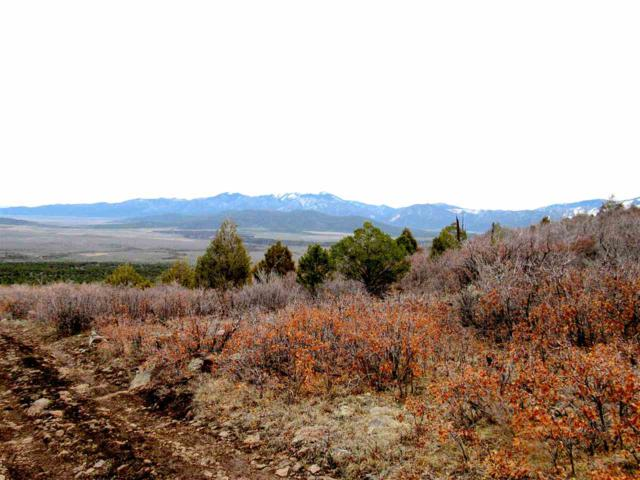 Delano Ranch Cerro Montoso Rd, Taosw, NM 87571 (MLS #102975) :: The Chisum Realty Group