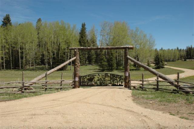 282 Acres Nm Hwy 120, Black Lake, NM 87710 (MLS #102977) :: The Chisum Realty Group
