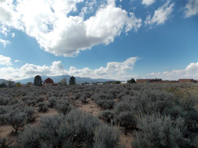 1456 Sangre De Cristo Road, Taos, NM 87571 (MLS #102990) :: The Chisum Realty Group