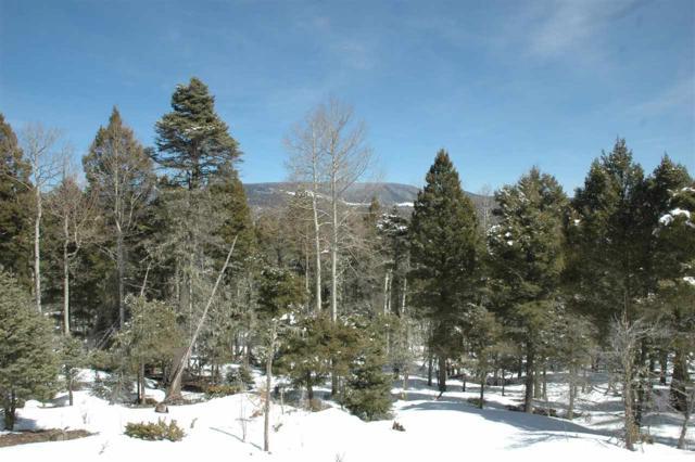 100 Via De Maria, Angel Fire, NM 87710 (MLS #103026) :: Page Sullivan Group | Coldwell Banker Mountain Properties