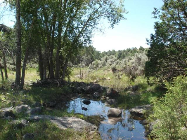 Arroyo Aguaje Bridge, Taos, NM 87571 (MLS #103036) :: The Chisum Realty Group