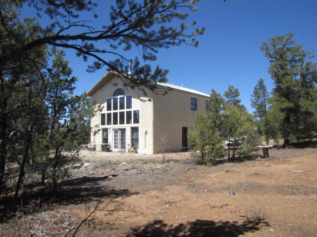 1972 Old State Rd 3         Lama Rd, Taos, NM 87556 (MLS #103047) :: The Chisum Realty Group