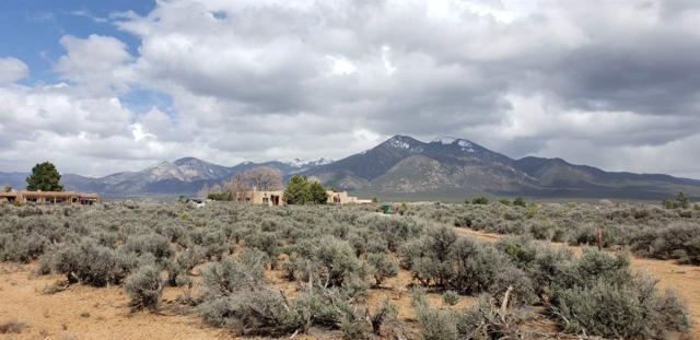 Tract 1A Rock Garden Gully, Taos, NM 87571 (MLS #103050) :: The Chisum Realty Group