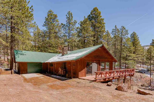130 Vail Avenue, Angel Fire, NM 87710 (MLS #103052) :: The Chisum Realty Group
