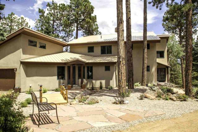 87718 Snowflake Rd, Eagle Nest, NM 87718 (MLS #103055) :: The Chisum Realty Group