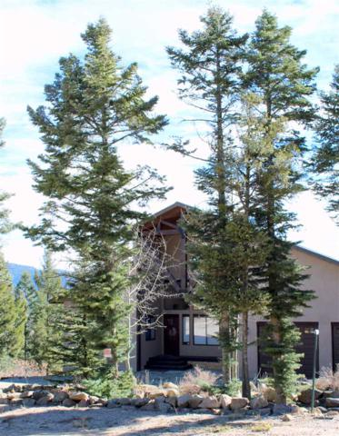 25 Santo Domingo Trail, Angel Fire, NM 87710 (MLS #103065) :: Page Sullivan Group   Coldwell Banker Mountain Properties