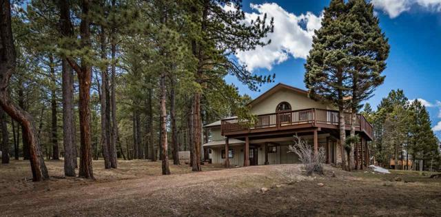 29 Mountain Lake Way, Angel Fire, NM 87710 (MLS #103073) :: Page Sullivan Group | Coldwell Banker Mountain Properties