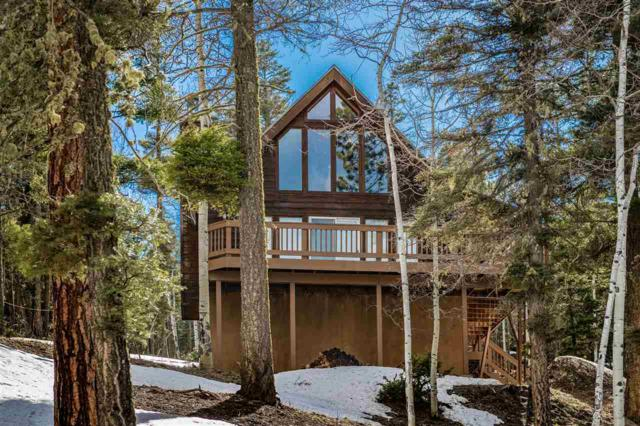 50 Santo Domingo Trail, Angel Fire, NM 87710 (MLS #103076) :: Page Sullivan Group | Coldwell Banker Mountain Properties