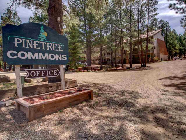 64 Mammoth Mountain Rd Pinetree 214, Angel Fire, NM 87710 (MLS #103090) :: The Chisum Realty Group