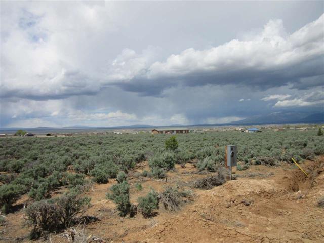 41 Camino De Golondrina, Ranchos de Taos, NM 87557 (MLS #103095) :: Page Sullivan Group