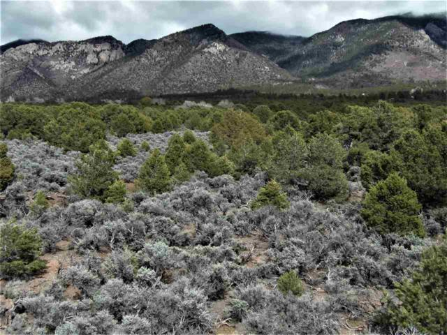 2 tenths mile Quintana Road, Questa, NM 87556 (MLS #103106) :: Page Sullivan Group | Coldwell Banker Mountain Properties
