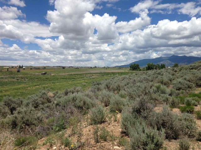 off Blueberry Hill Rd, El Prado, NM 87529 (MLS #103107) :: The Chisum Realty Group