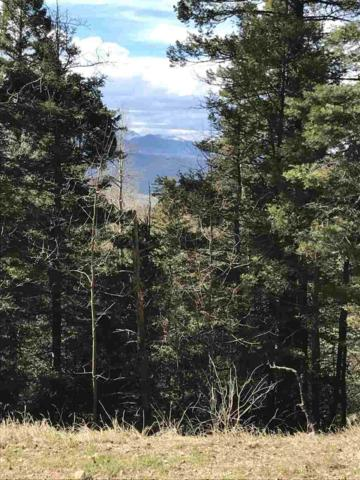 58 Back Basin Road, Angel Fire, NM 87710 (MLS #103124) :: Angel Fire Real Estate & Land Co.