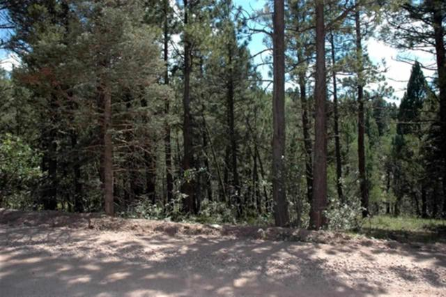 Lot 1552 Camino Real, Angel Fire, NM 87710 (MLS #103127) :: Page Sullivan Group | Coldwell Banker Mountain Properties