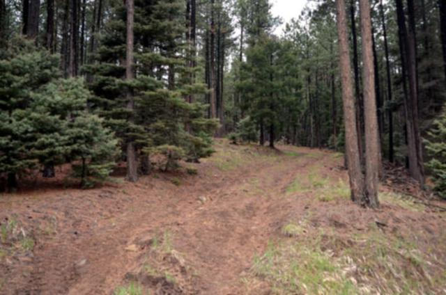 Lot 24A B Pam Coleman Dr, Angel Fire, NM 87710 (MLS #103135) :: The Chisum Realty Group